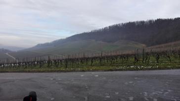 Panorama Hohenhaslach (1)