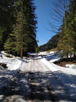 Röhrmoosbach Tal