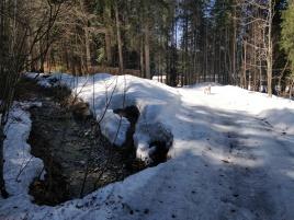 Von der Jachenau rauf zum Röhrmoosbach Tal
