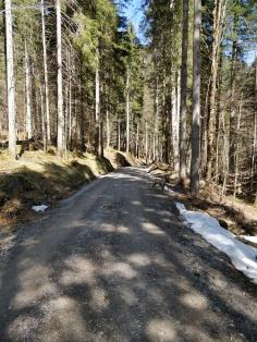 Jachenau Richtung Röhrmoosbach Tal