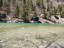 kurzes Bad in der Isar in der Nähe des Sylvenstein Kraftvwerks